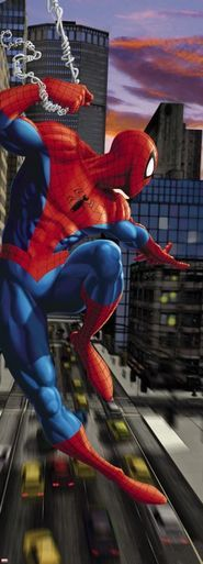 Spiderman NYC Photomural
