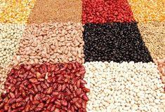 I legumi in agricoltura biologica. Opportunità e tradizione