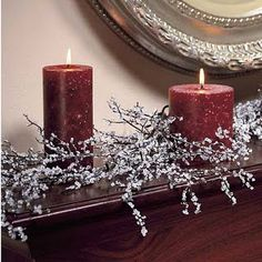 DIY: Making Iced Branches - save on crafts - Christmas - Noel Christmas, All Things Christmas, Winter Christmas, Christmas Branches, Tree Branches, Christmas Lights, Christmas Glitter, Beach Christmas, Elegant Christmas