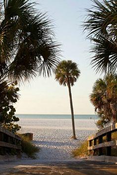 wonderfulpalmettolife: Siesta Key Beach |... We have this exact picture