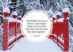 For everyone who's in love with the winter.
