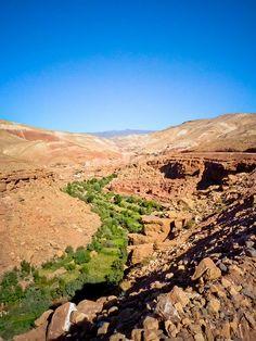 Oasis in the Sahara, Oarzazate, Morocco - #morocco #sahara #desert Maroc Désert Expérience tours http://www.marocdesertexperience.com