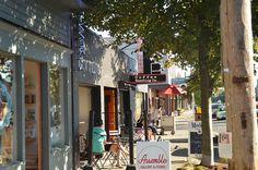 Phinney Ridge, Seattle WA - Neighborhood Guide - findwell