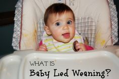 What is Baby Led Weaning? From 100 Days of Real Food #realfood #babyledweaning