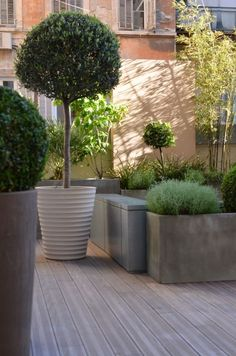 Elegant planting for the terrace. Louis Vuitton, F...