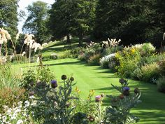 Dirleton Castle gardens: the early 20th century 'Arts & Crafts' herbaceous border