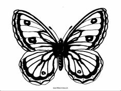 Butterfly Coloring Book Insect Coloring Pages, Butterfly Coloring Page, Coloring Books, Butterfly Illustration, Book Activities, Illustrations, Vintage Coloring Books, Illustration, Coloring Pages