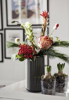 Flower decoration for christmas.