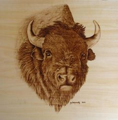 Chief Pyrography  - Chief Fine Art Print