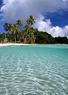 Fiji     I love swimming in clear waters like this!