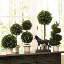Image result for rosemary wreath topiary