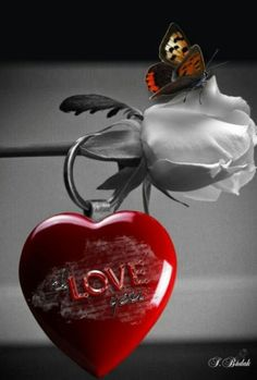 feeling of love. I like the feelings of love. Heart Wallpaper, Apple Wallpaper, Love Wallpaper, Cellphone Wallpaper, Beautiful Love Pictures, Love You Images, Heart Art, Love Heart, Hearts And Roses