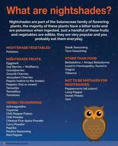 What are nightshades? – MS Wellness Route What are nightshades? Lupus Diet, Plant Paradox Diet, Nightshade Free Recipes, List Of Vegetables, Nightshade Vegetables List, Veggies, Autoimmune Diet, Aip Diet, Anti Inflammatory Recipes
