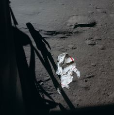 AS14-66-9229 (OF300) ( 127k or 836k )  113:52:32 Ed took this photo of Al out the right-hand, LMP window. Al is shading his eyes, probably looking up toward Cone Crater. Note the red stripe on the top of Al's helmet. This and similar stripes on his arms and legs help distinguish him from Ed, who has no stripes. The next four frames were taken of Al Shepard by Ed Mitchell: two pictures from inside the LM and two out on the surface.
