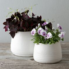 """An uneven rim gives these stoneware pots a handmade feel, while a clean, white glaze offsets bright blooms.- Ceramic, glaze- ImportedSmall: 4""""H, 6"""" diameterLarge: 5.5""""H, 7"""" diameter"""