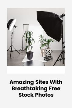 You don't have to take every single photo you share in your feed. 🤯 Here are 5 awesome websites to find stock images that match your style and feed #linkinbio . . . . . . #empowerment #entrepreneur #branding #digitalmarketing #motivation #success #inspiration #smallbusiness #socialmediamarketing #startup #socialmedia #entrepreneurship #design #advertising #hustle #contentmarketing #entrepreneurlife #entrepreneurs Email Marketing Campaign, Content Marketing, Social Media Marketing, Digital Marketing, Amazon Advertising, Social Advertising, Awesome Websites, Website Maintenance, Motivation Success