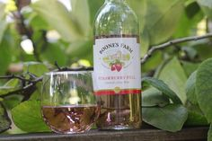 boones farm and wines of the past vintage image t-shirt ...