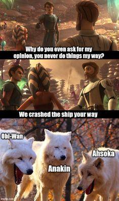 Star Wars Rebels, Star Wars Clone Wars, Really Funny Memes, Stupid Funny Memes, Space Movies, Star Wars Jokes, Star Wars Pictures, Star Wars Baby, She Wolf