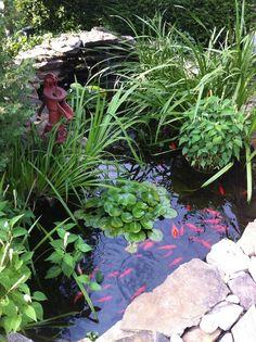 My little garden pond this past summer! :)