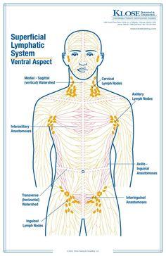 Standard Treatment of Lymphedema-Manual Lymphatic Drainage Massage