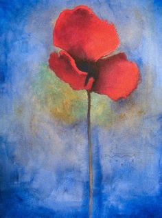 Red Poppy by Seth Fitts
