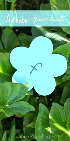 Go on a flower alphabet hunt to make learning fun!  Spring activity for preschool.
