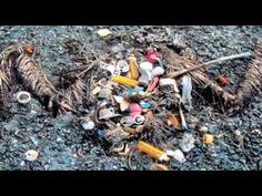 Plastic Soep: onze oceanen, alle leven daarin en wijzelf worden bedreigd doordat er ontzettend veel plastic in rond drijft. Dit wordt opgegeten door dieren en komt ook in onze voedselketen terecht. Lush wil mensen graag bewust maken van de gevaren van plastic. Neem je eigen tas mee, koop geen flesjes water en recycle je afval zoveel mogelijk, dat helpt echt!