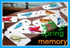 spring memory