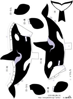 orca/ killer whale cutouts------good for seaworld scrapbook layouts.......Google Image Result for http://papercraftprintable.com/wp-content/uploads/2008/11/killer_whale_papercraft_template.gif