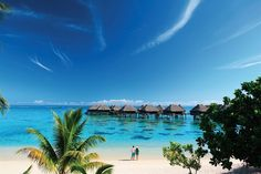 Hilton Moorea Lagoon Resort and Spa - Hotels.com - Hotel rooms with reviews. Discounts and Deals on 85,000 hotels worldwide