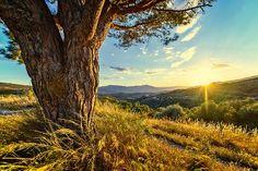 Sunset Abendstimmung Landscape - Free photo on Pixabay Dream It Do It, Dream Big, Sierra Nevada, Week End En Europe, Arvada Colorado, Location Chalet, Luz Solar, Destinations, Do Everything In Love