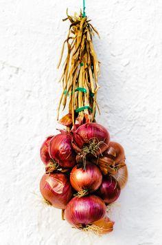 http://www.findbestwebsites.com Ayer colgaban de la barraca huertana en la rambla de Los Alcázares (Murcia) dentro de la muestra anual de arte, cultura y tradiciones huertanas en dicha localidad costera (XL Semana Internacional de l
