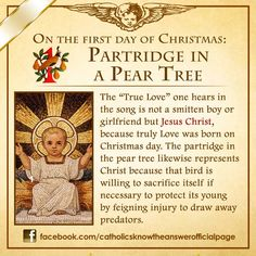 Fhotos de Catholics Know The Answer                                                                                                                                                                                 More