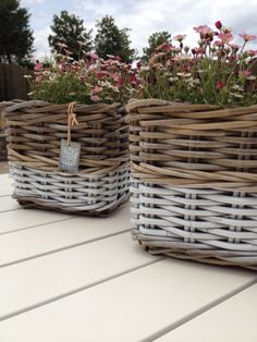 Dual toned baskets with flowers planted in them. I like the white bottoms