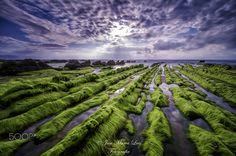 BARRIKA XXII - Espectacular paisaje de luz y color el que nos ofrece la impresionante playa de Barrika