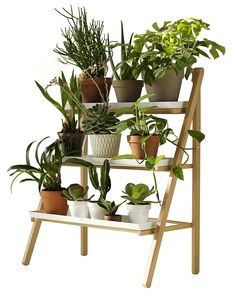 This Indoor plant stand ideas multi level diy idea for a small vertical garden indoors contemporary stands photos and collection about Indoor plant stand ideas full. Ideas for indoor plant stand Indoor Plans images that are related to it Diy Plant Stand, Outdoor Plant Stands, Tiered Plant Stand Indoor, Plant Shelves, Garden Shelves, Wood Shelves, Shelving, Unique Shelves, Stand Design