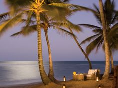 Moonlit Beach at Zoetry Agua Punta Cana Resort. This is so beautiful and romantic. Dream Vacations, Vacation Spots, Places To Travel, Places To See, Punta Cana, Hotels And Resorts, Beautiful Beaches, Beautiful World, Scenery