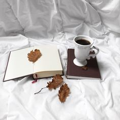 Coffee leaves autumn leaves book wallpaper white minimalistic books cute cozy warm