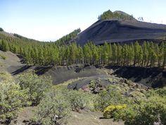 Paisajes entre Montañon Negro y las Cumbres - Gran Canaria
