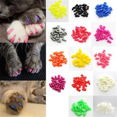 20Pcs/Lot Colorful Soft Pet Dog Cats Product Kitten Paw Claws Control Nail Caps Cover Size XS S M L XL XXL With Adhesive Glue