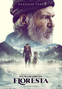 Call of the Wild. Directed by Chris Sanders. With Karen Gillan, Harrison Ford, Bradley Whitford, Dan Stevens. A sled dog struggles for survival in the Alaskan wild. 2020 Movies, Hd Movies, Movies And Tv Shows, Action Movies, Upcoming Movies 2020, Indie Movies, Disney Movies, Films Netflix, Films Hd