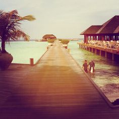#malvides #maldives2013 #holiday #wow #wowplaces #blogger #travel #dream beach #sun #vacation