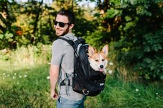 🎒Careful, you're carrying precious cargo! #PuppyOnBoard Dog Backpack, Hiking Dogs, Commute To Work, Hamster, Tier Fotos, Dog Carrier, Pet Carriers, Bradley Mountain, Small Dogs