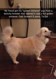 i wouldn't even be mad. Not a little teeny bit.
