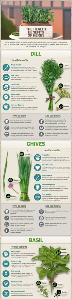 The many health benefits of herbs great information graphic