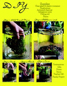 DIY make your own terarium - planting - glass container .You can view the full Issue of Party Style magazine Online at  http://www.ilovepartystyle.com/magazine_subscribe