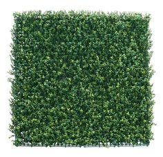 Muros Verdes - Innover - Exteriorismo