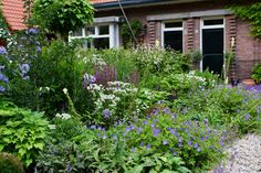 Tuinontwerp voortuin Goes met cottagebeplanting tuinontwerper SK tuinatelier Outside Living, My Secret Garden, Future House, Home And Garden, Outdoor Structures, Rustic, Green, Nature, Plants