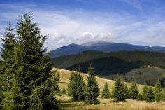 Telgárt Mountains, Nature, Travel, Voyage, Viajes, Traveling, The Great Outdoors, Trips, Mother Nature