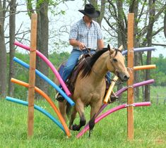 DIY Horse training aid (pool noodles) I want to make this in the summer and make my horses go through it!!